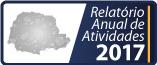 Relatório anual de atividades 2017