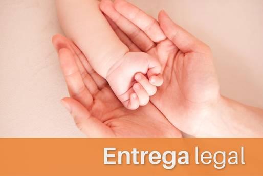 Mão de bebê sobreposta nas mãos de um adulto e a legenda